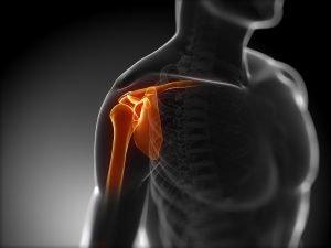 image de l'articulation de l'épaule pour sportif